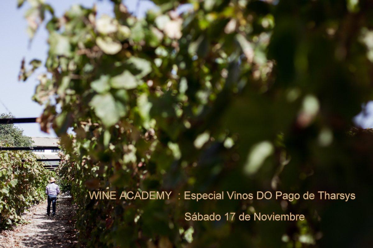 Wine Academy : Especial Vinos de Pago
